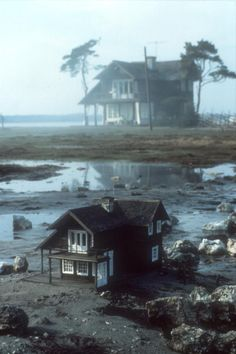 "Imagen del film The Sacrifice (Swedish: ""Offret""), 1986.  Dirigida por Andrei Tarkovsky."