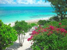 Villa vacation rental in Other Providenciales Properties from VRBO.com! #vacation #rental #travel #vrbo