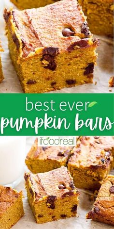 Easy and Healthy Pumpkin Bars are made with oatmeal, almond flour and chocolate chips. A delicious guilt free treat on a chilly fall day that the entire family will love! Healthy Pumpkin Bars, Gluten Free Pumpkin Bars, Healthy Baking, Healthy Snacks, Guilt Free, Dessert Bars, Almond Flour, Chocolate Chips, Clean Eating Recipes