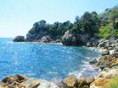 #rocky #beach #nature #wild_beauty