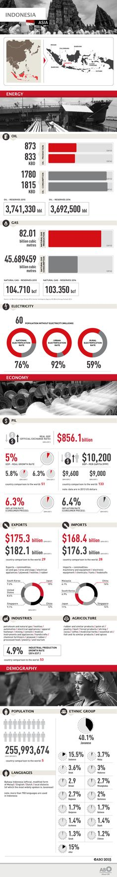 #Infographic: Facts and figures on the #energy, economy and demographics of #Indonesia