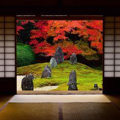 Best Japanese Gardens In The World Zen Rock Garden, Zen Garden Design, Landscape Design, Japanese Design, Japanese Art, Japanese Gardens, Small Courtyard Gardens, Asian Garden, Deciduous Trees