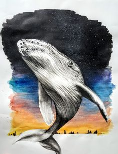 Whale (watercolor, India ink and pencil drawing) Watercolor Whale, India Ink, Pencil Drawings, Paintings, Animals, Board, Animales, Paint, Animaux