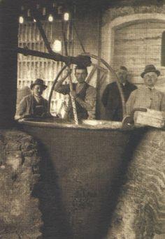 """Il Caciocavallo Silano DOP è senza dubbio fra i più antichi e tipici formaggi a pasta filata del Mezzogiorno d'Italia. Della sua produzione ne accennava già Ippocrate nel 500 a.C., discorrendo dell'arte usata dai Greci nel preparare il """"Cacio""""."""