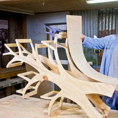 DIY curved tree shelves - I wants this for my living room. I wonder ow big I could make this