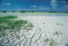 Desiertos de republica dominicana -