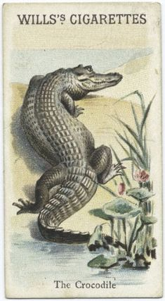 Cigarette Cards: Animals and Birds list