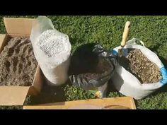 Sukulent ve Kaktüs toprağı hazırlama , sulama Preparation of Suculent and cactus potting soil mix - YouTube