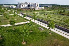 Montevrain_Park-Urbicus_landscape_architecture-01 « Landscape Architecture Works   Landezine