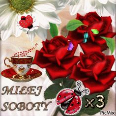 Good Morning My Love, Good Night, Christmas Wreaths, Christmas Bulbs, Gift Wrapping, Holiday Decor, Blog, Memes, Pictures