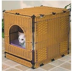 Litter Box Solutions IF!!! I ever have a cat.