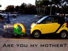 Are you my mother? lol