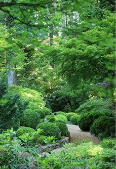 Woodland Garden Design Ideas_2