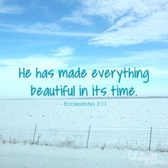 Ecclesiastes Bible Quote about Beauty
