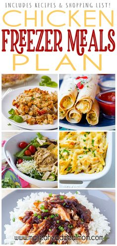 5 meals, 10 dinners, in less than 2 hours!  Recipes and shopping list included in post.  these are some of our family's favorite freezer meals! Best Freezer Meals, Chicken Freezer Meals, Grilled Chicken Recipes, Baked Chicken Recipes, Frugal Meals, Easy Dinner Recipes, Meal Recipes, Turkey Recipes, Kitchen Recipes