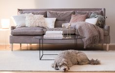 idkuva coffee table diary blog sisustusblogi interior design olohuone sisustus adea hudson sohva balmier trendiväri 2016 ruusukvartsi