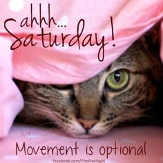 Movement is optional saturday saturday quotes saturday images Saturday Morning Quotes, Saturday Memes, Saturday Saturday, Morning Humor, Good Morning Quotes, Sunday, Funny Weekend Quotes, Night Quotes, Saturday Greetings