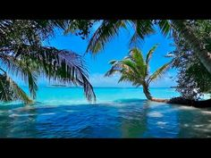 Música Relajante - Naturaleza - Relajarse, Dormir - YouTube