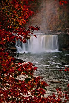 ✯ Cumberland Falls, KY