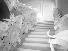 Chanel pop-up installation, white paper flowers White Paper Flowers, Paper Flower Decor, Flower Decorations, Wedding Decorations, Giant Flowers, Paper Decorations, Band Wand, Ribbon Wall, Paper Flower Arrangements