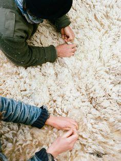 Brian Ferry Documents Sheep Shearing In The Appalachian Mountains – iGNANT.de