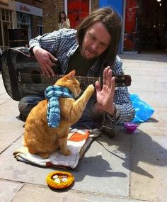Bob Cats bob cat 2 - The story has begun one day in a subway when homeless man James Bowen saw a red cat with a wound on its leg. It was obvious that the cat needed a help, I Love Cats, Cute Cats, Funny Cats, Crazy Cat Lady, Crazy Cats, Street Cat Bob, Red Cat, Orange Cats, Cat People