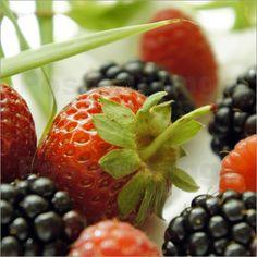Poster die Erdbeere