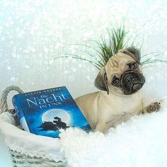 #uschi #uschigram #puppy #cute #bookstagram #book #authors #friends #dienachtinuns #vampires #angels #bellalamour #dogoftheday #dog #dogbed #paperlove #puppylove