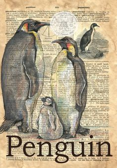 Penguin Mixed Media Drawing on dictionary page - flying shoes art studio …Print of Original, Mixed Media Drawing on Distressed, Dictionary Page This drawing of Emperor Penquins is drawn in sepia ink and created with pastelPenguin x Mixed Media Draw Tableau Pop Art, Biology Art, Newspaper Art, Penguin Art, Book Page Art, Dragonfly Art, Dictionary Art, Antique Prints, Art Plastique