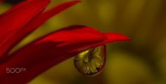 What are you waiting for ? by Aylin in the Dropland on 500px