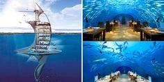 seaorbiter cruise ships of the future