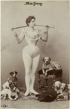 Miss Jenny ~ evidently a corsetted circus act with dalmations, a poodle, a pit bull & a couple Jack Russells