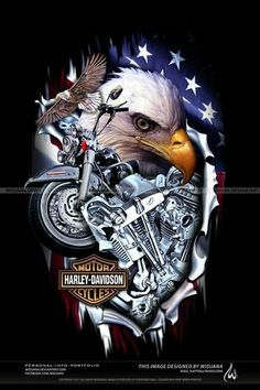 HARLEY DAVIDSON! As a vet there is something that i just love about american bald eagles #HDNaughtyList
