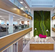 Research proves that interior vegetation boosts productivity, concentration, and…