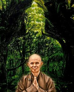 Zen Master, Thich Nhat Hanh, Buddhism, Spirituality, Couple Photos, Drawings, Idol, Journey, Peace