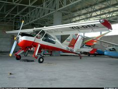 Lots of ramp appeal  - Wilga-35A | Aviation