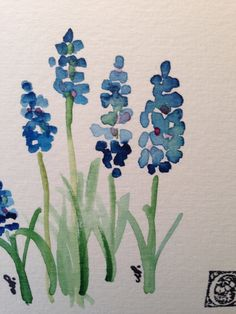 Grape Hyacinths Watercolor Card I by gardenblooms on Etsy