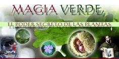 MAGIA VERDE, EL PODER SECRETO DE LAS PLANTAS
