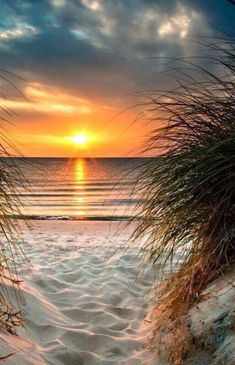 I love going to the beach and seeing the sunset. When I'm at the beach, i love staying there till sunset, it just makes me feel calm and relaxed. Beautiful Sunrise, Beautiful Beaches, Sunset Beach, Beach Sunsets, Sand Beach, Beach Sunset Painting, Summer Sunset, Beach Fun, Ocean Beach