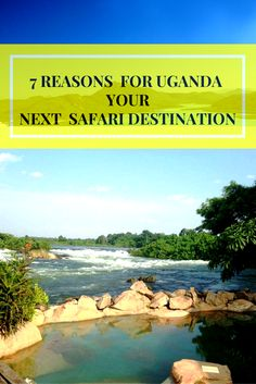 Here are 7 reasons why Uganda Should be your safari Destination & tips for a memorable experience – Pkjulesworld Best Places To Travel, Places To Visit, Nile River, Travel With Kids, Uganda, Travel Inspiration, Traveling By Yourself, Fun Facts, Safari
