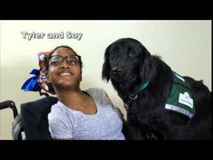 Many of you have fond memories of our dogs and their recipients and now you can see them anytime you feel the need on our You Tube Channel! http://bit.ly/caninevideo Warning: Tissues not included.