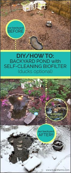 DIY/How To: Build a backyard pond with a self-cleaning biofilter
