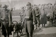 Pozieres War Animal Memorial - July 2017   Australian Dog Lover - Belgian soldiers and their dog teams during World War I.