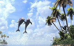Tapeta na plochu delfíni zábava