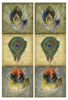 2-Up Feather Triptych II