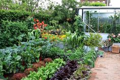 Trädgårdstid