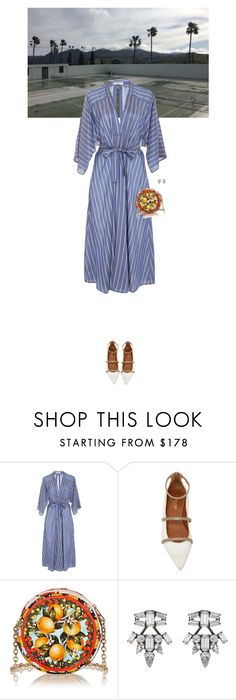 """Untitled #2749"" by wizmurphy ❤ liked on Polyvore featuring Tome, Malone Souliers, Dolce&Gabbana, DANNIJO and stripes"