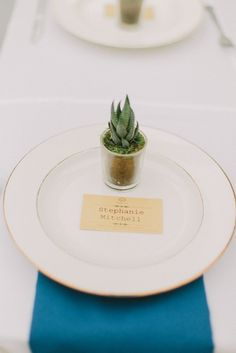 The bride planted these succulents herself, what an awesome eco friendly wedding favor. http://www.confettidaydreams.com/autumn-birch-house-wedding/Glen Helen Birch House Wedding  @chloe-luka-photography