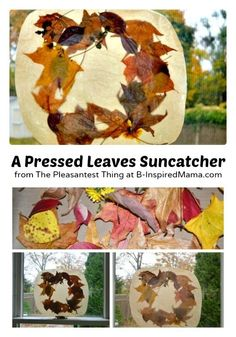 Press Leaves for a Fall Suncatcher Craft for Kids - at B-Inspired Mama
