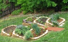 Google Image Result for http://www.herbgardendesigns.org/wp-content/uploads/2012/07/Herb-Garden-Design-for-Hillsides.jpg